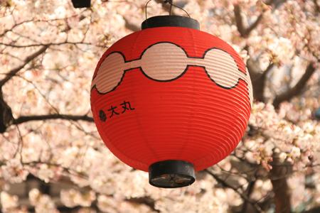 kyoto_views2